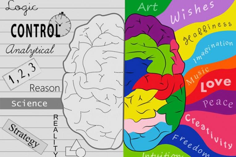 11 dicas para estimular e manter o cérebro saudável