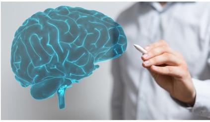 avaliacoes reabilitacoes neuropsicologicas 183